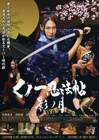 Lady Ninja Reflections Of Darkness Japanese Movie Poster